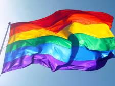 Nieuwe regenboogvlag bij Bevrijdingskerk Wageningen alweer in top na verbranding
