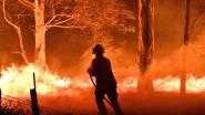 Massa-evacuatie uit badplaatsen in het zuidoosten van Australië om bosbranden