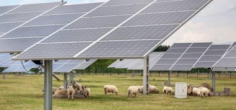 Groene partijen in Brabant: 'Kijk kritisch naar plek zonneweides'