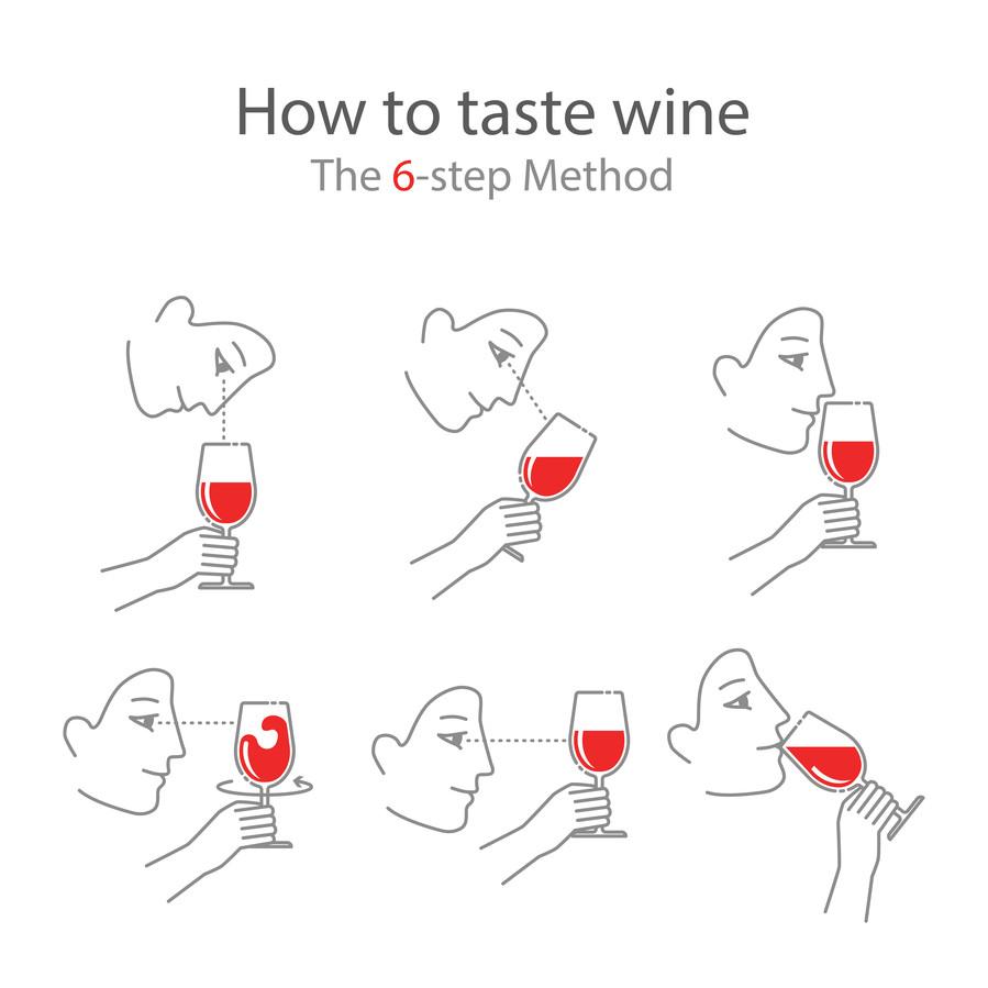De 6 stappen van wijn proeven.