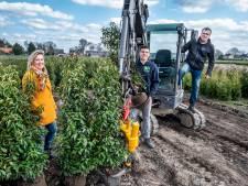 Ottersums familiebedrijf bedient zakelijke en ook particuliere markt: 'Planten vers van de kwekerij via een webwinkel'