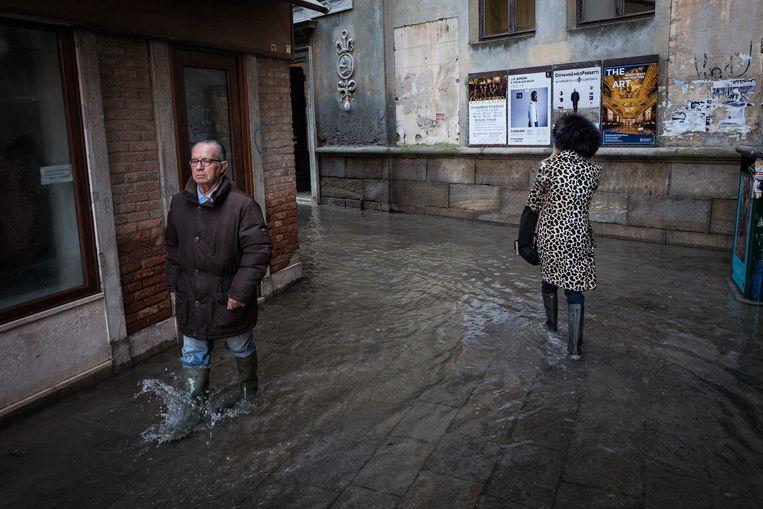 Venetianen praten niet tijdens het waden, want waden is een secuur werkje.  Beeld null