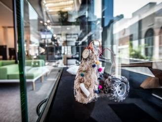 Studenten Keramiek aan SASK palmen stadhuis in voor derde editie van 'Kunst in 't Scheep'