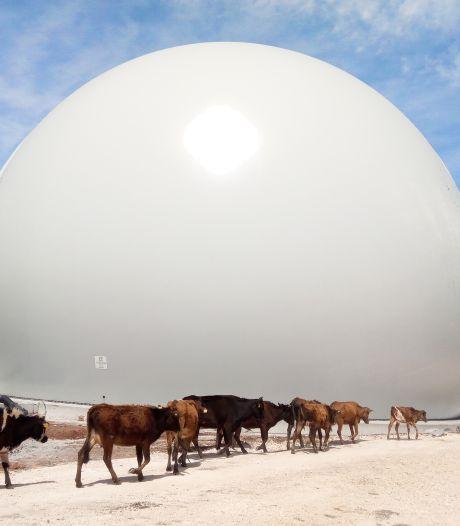 Oldenzaals bedrijf Flexxolutions presenteert met trots een knoert van een biogasbol