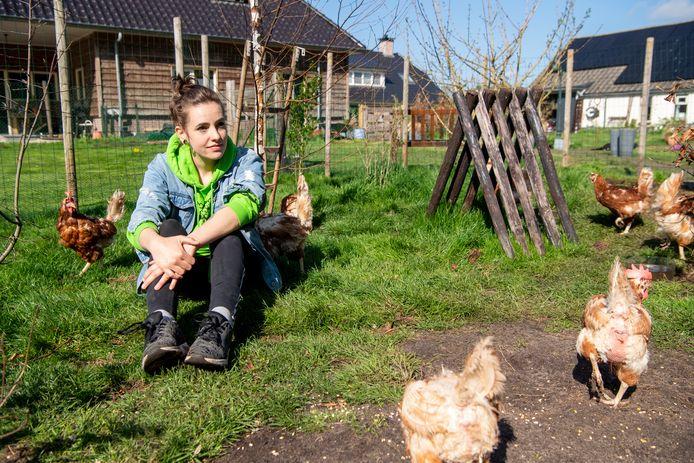 Laureen Wes is betrokken bij de stichting Red de Legkip en houdt in Dedemsvaart een opvang voor kippen.