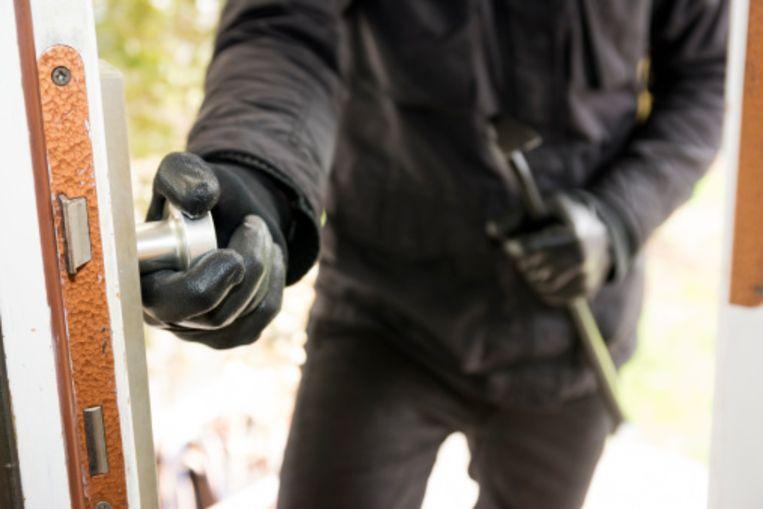 De politie hield een klopjacht naar de inbrekers.
