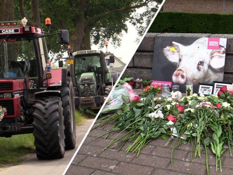 Dierenactivisten houden wake voor verbrande varkens: boeren beschermen boerderij