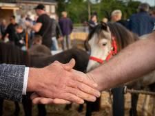 Paardenevenementen Elst en Bemmel afgeblazen: 'Je doet geen handjeklap met je ellebogen'