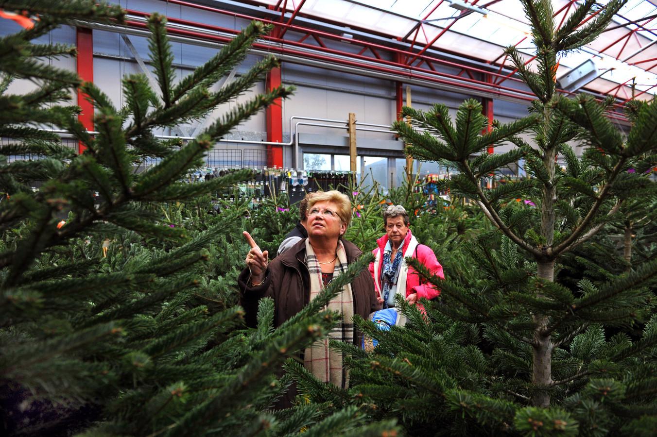 Postbode Bezorgt Voor Een Tientje De Kerstboom Aan Huis Binnenland