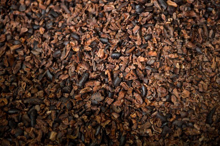 Cacaobonen Beeld Reuters