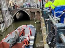 Schipper redt jong duifje uit benarde situatie aan de Oudegracht