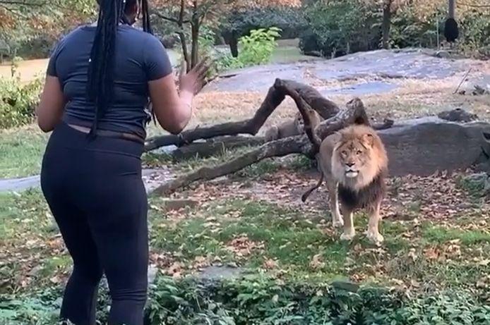 La femme qui s'est introduite dans un enclos de lions