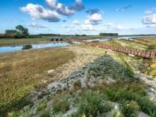 Partij voor Zeeland ongerust over zout water in Waterdunen