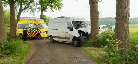 Bestuurster van bestelbus raakt van de weg in Wijhe en komt tegen boom tot stilstand
