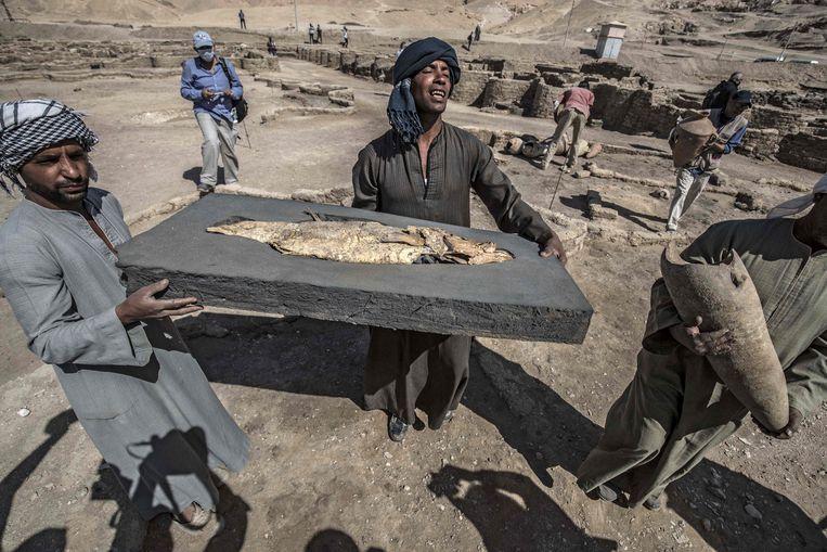 Volgens de archeologen is het 3400 jaar oude Aten de grootste Oud-Egyptische stad die ooit is opgegraven. Er werd veel gevonden, waaronder een gefossiliseerde vis.  Beeld AFP