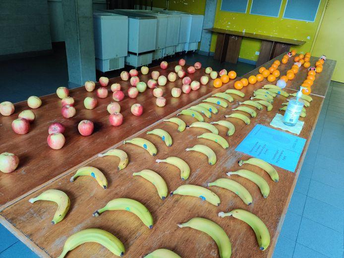 Fruit voor de studenten van het blokkot
