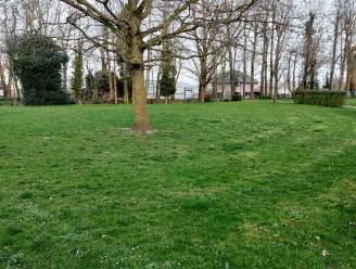 Broeders Maristenpark krijgt 'Smoestuin'