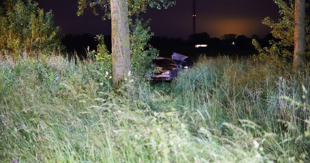 Bestuurder verongelukt op A2, auto belandt tientallen meters verderop in weiland.