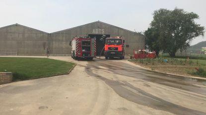 Schuurbrand in Bierbeek, geen gevaar voor nabije dieren