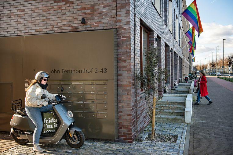 Regenboogvlaggen in IJburg. Beeld Guus Dubbelman / de Volkskrant