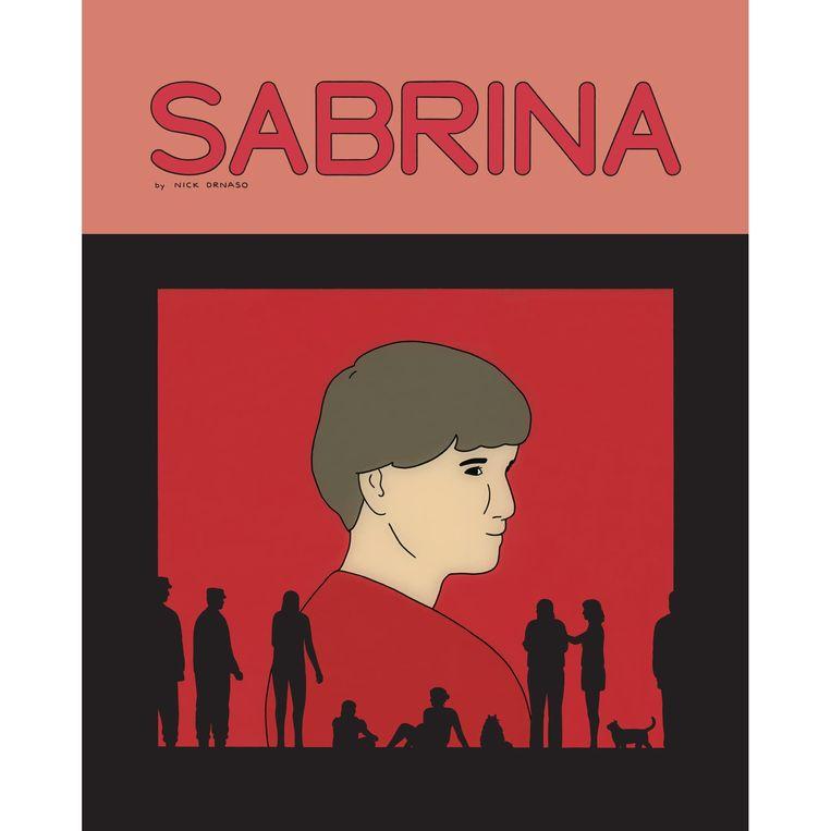 'Sabrina' van Nick Drnaso. Beeld rv