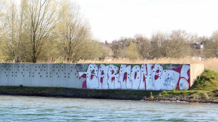 Graffiti over de oeverzwaluwenwand op Landgoed Haarzuilens. Zelfs over- en in de nestgaten waar de vogels broeden. De bordjes geven aan dat het hier om een kwetsbare groep vogels gaat die in alle rust hun jongen moeten grootbrengen.