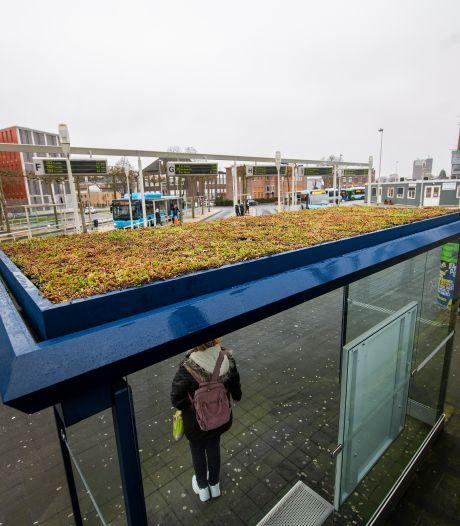 Leuk idee, die groene bushokjes - maar waar blijven ze in Apeldoorn?