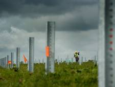 Gelderland en Zuid-Holland willen geen zonneweide op akkers