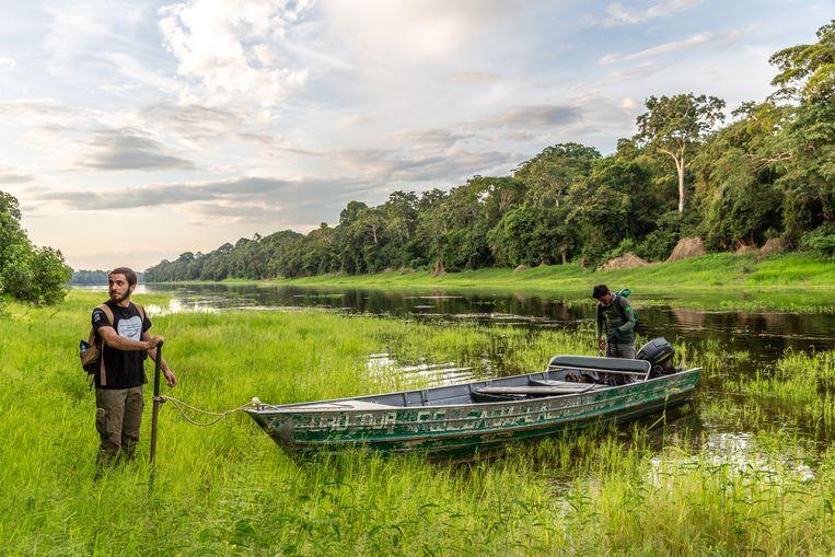 Het Braziliaanse natuurreservaat Mamirauà kun je alleen bezoeken per boot Beeld Noël van Bemmel
