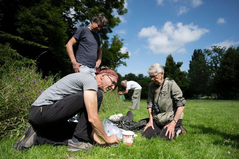 Het is de vierde keer dat 'Taxon Expeditions', een organisatie die Schilthuizen opzette, deze 'urbane expeditie' houdt. Beeld Bram Petraeus