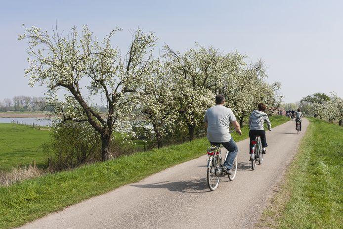 In het programma verschillende fiets- en wandeltochten rond Streuvels.