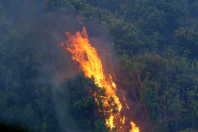 Bosbrand op het Italiaanse eiland Sardinië. In het zuiden van Italië woeden verschillende natuurbranden, vooral op de eilanden Sicilië en Sardinië maar ook op het vasteland.