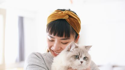 15 tekenen dat je een crazy cat lady bent