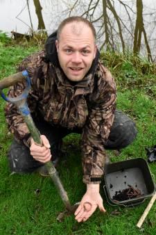 Waarom de regenworm zich zo thuis voelt in het Groene Hart: goed voor de tuin, vissers en vogels