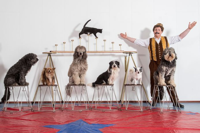 Tiel 29/04/2021 Mister Valentino - Dave de Ruiter - act - honden - circusact - tbv Gelderlander - dgfoto - foto Raphael Drent