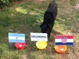 Wie gaat er winnen? Argentinië of Kroatië?