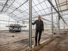 Tuinbouwgebied Honderdland in Maasdijk is bijna geschiedenis: 'We hebben de strijd toch verloren'