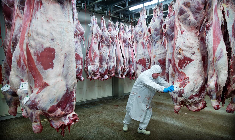 De afdeling uitbeenderij voor kalfsvlees van de Nederlandse Van Drie Group.  Beeld ANP XTRA