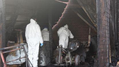 Pyromaan op pad in regio Alken: al 5 verdachte branden in één maand tijd