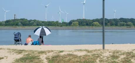 De grote revival van Sint-Anneke Plage: masterplan moet glorie van weleer herstellen met meer groen en horeca op het strand