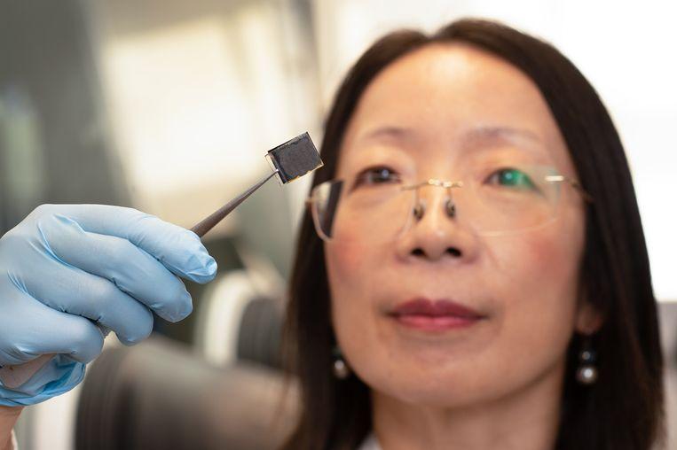 Profesor Wang bekijkt een perovskiet zonnecel voorzien van een laagje verbrande haren. Ze gaan zo langer mee en leveren meer stroom per vierkante centimeter. Beeld Queensland University of Technology