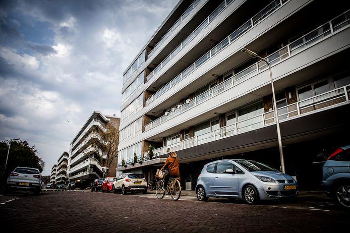 De Kapiteinflats in Zwijndrecht.