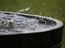 Voorkom een droge tuin: zo maak je optimaal gebruik van regenwater
