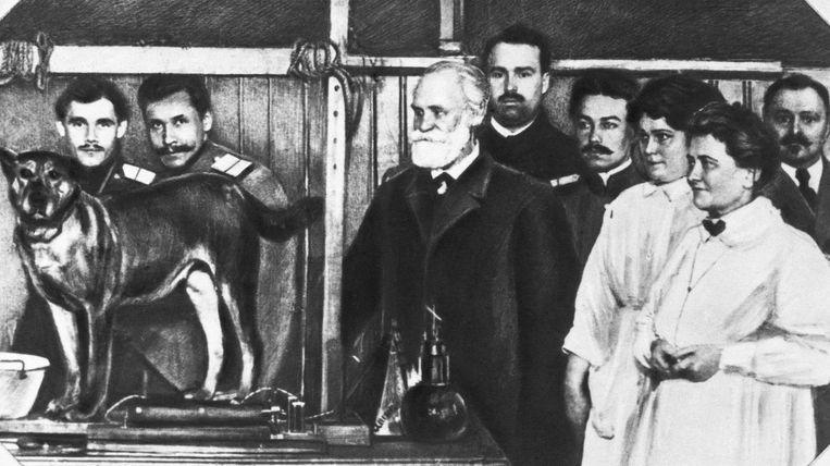 Ivan Pavlov (midden) toonde met zijn beroemde experiment de conditionering aan. Beeld Bettmann Archive