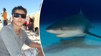 Opnieuw aanval van haai op La Réunion: Franse surfer (28) sterft