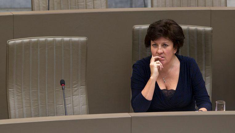 Minister Lieten. Beeld BELGA