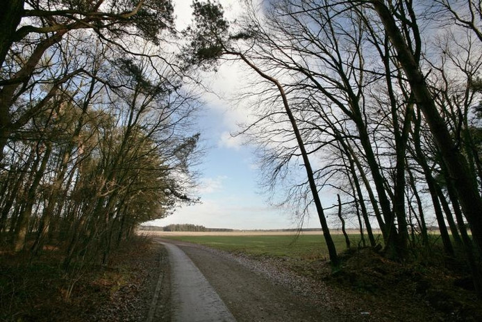 Het gebied de Riethovensche akkers in Bergeijk is volgens hoogleraar Frans Theuws een ware archeologische schatkamer.foto Ton van de Meulenhof