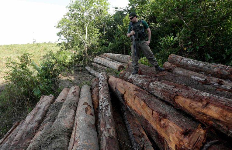 Een Braziliaanse politieman bij een partij illegaal hout uit het Amazonewoud. Beeld REUTERS