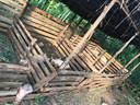 Een blik op de eerste varkenskwekerij van Kyataruga. Andere inwoners zijn gestart met kippen en geiten.