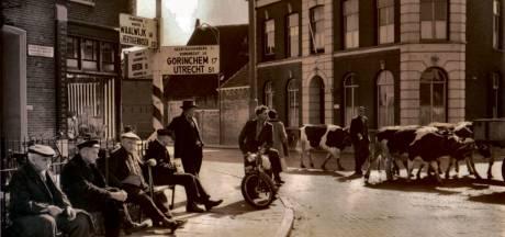 Historische ANWB-wegwijzer terug op kruispunt Raamsdonksveer